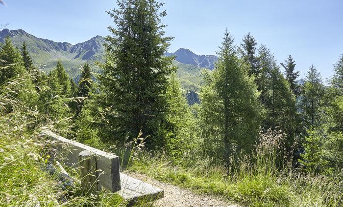Hotel Quelle Nature Spa Wandern Gsieser Talblickweg