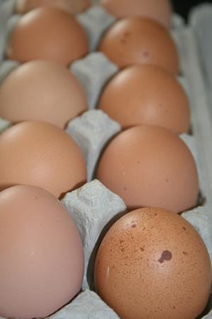 Nicht nur Eier sind Eiweißlieferanten...