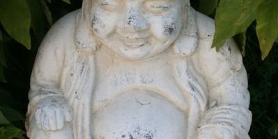 Buddhisten als Bio-Vorreiter?