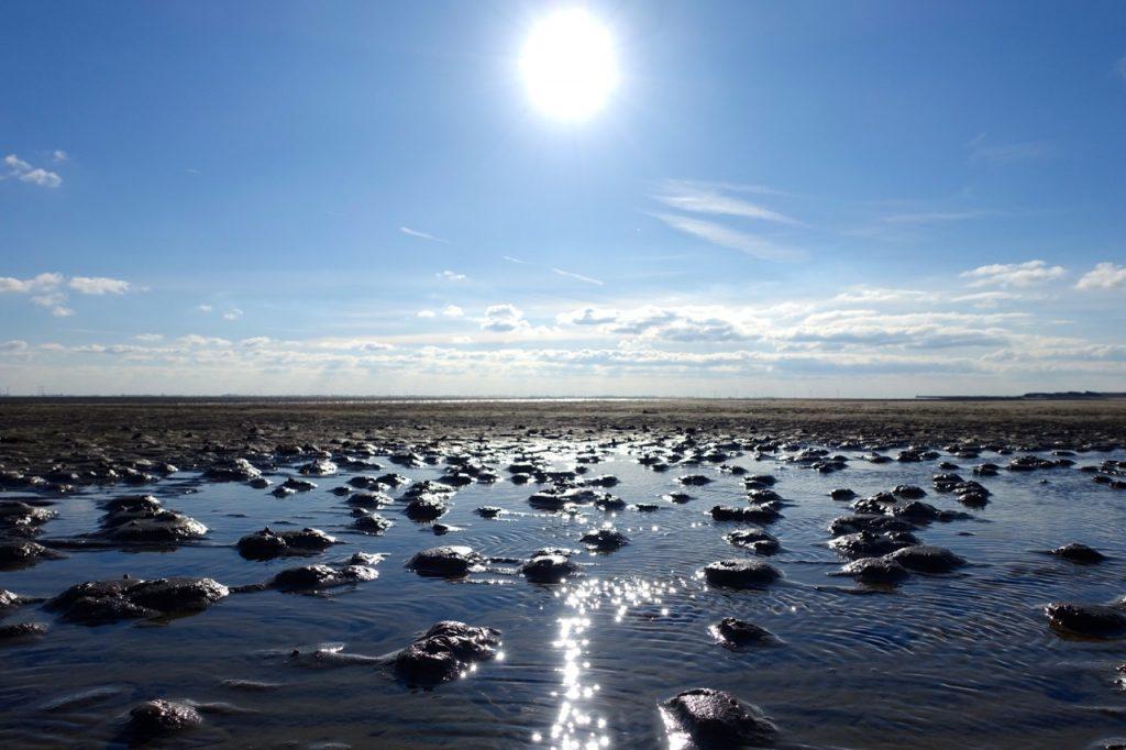 Wangerooge unterwegs im Watt