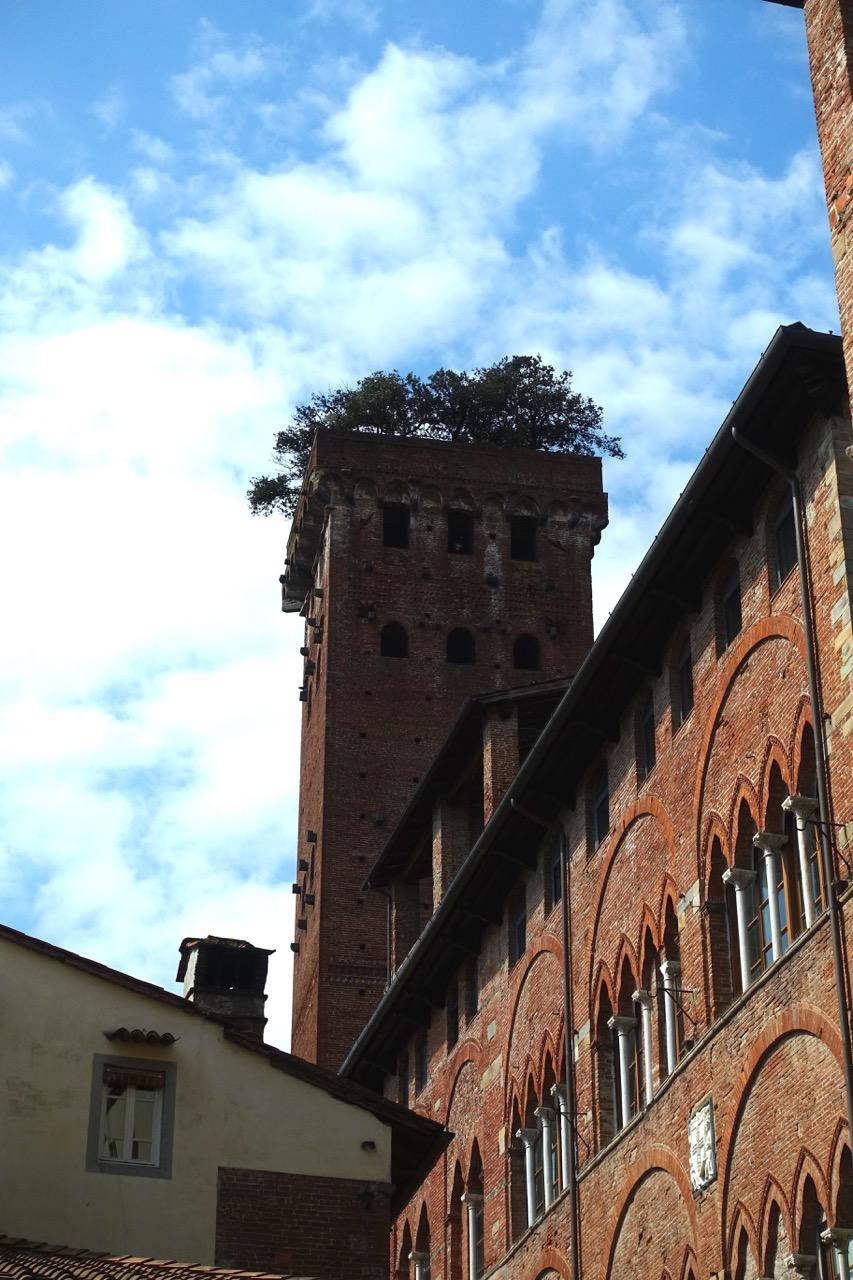 Lucca Reisetipps Torre Giugini