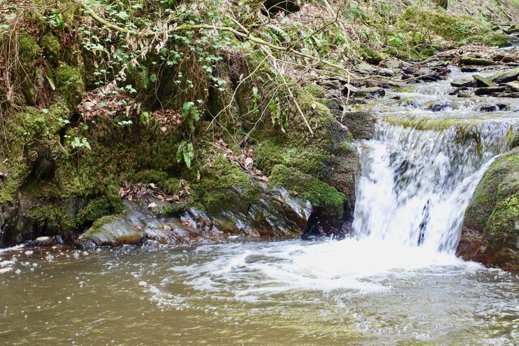 Wandern Brodenbach Mosel - Das Donnerloch