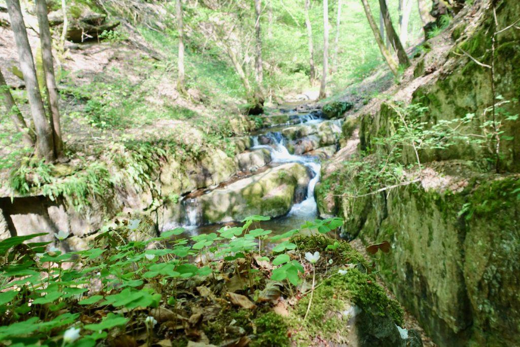 Brodenbach wandern: Donnerloch Brodenbach
