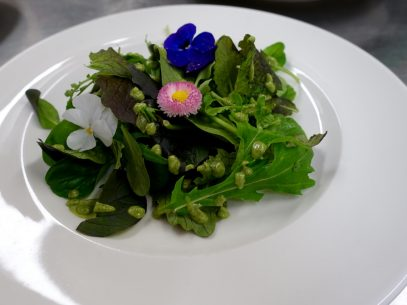Resort Mark Brandenburg Speisekarte