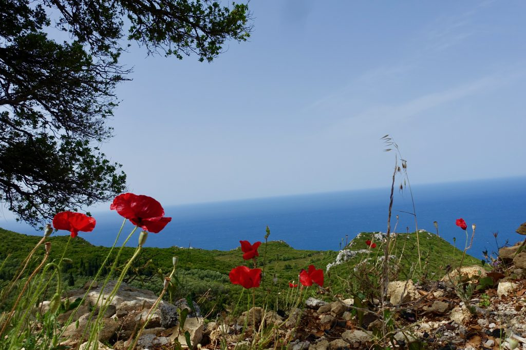 ...und mit Corfelios Bucht Aussicht