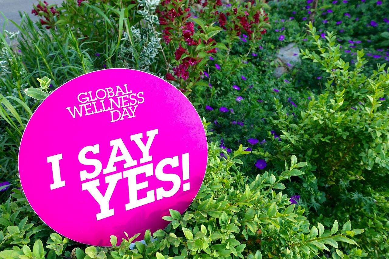 Global Wellness Day 2016 - Hier wird in Deutschland gefeiert!