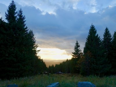 Wandern im Harz - auf der Jagd nach der Harzer Wandernadel