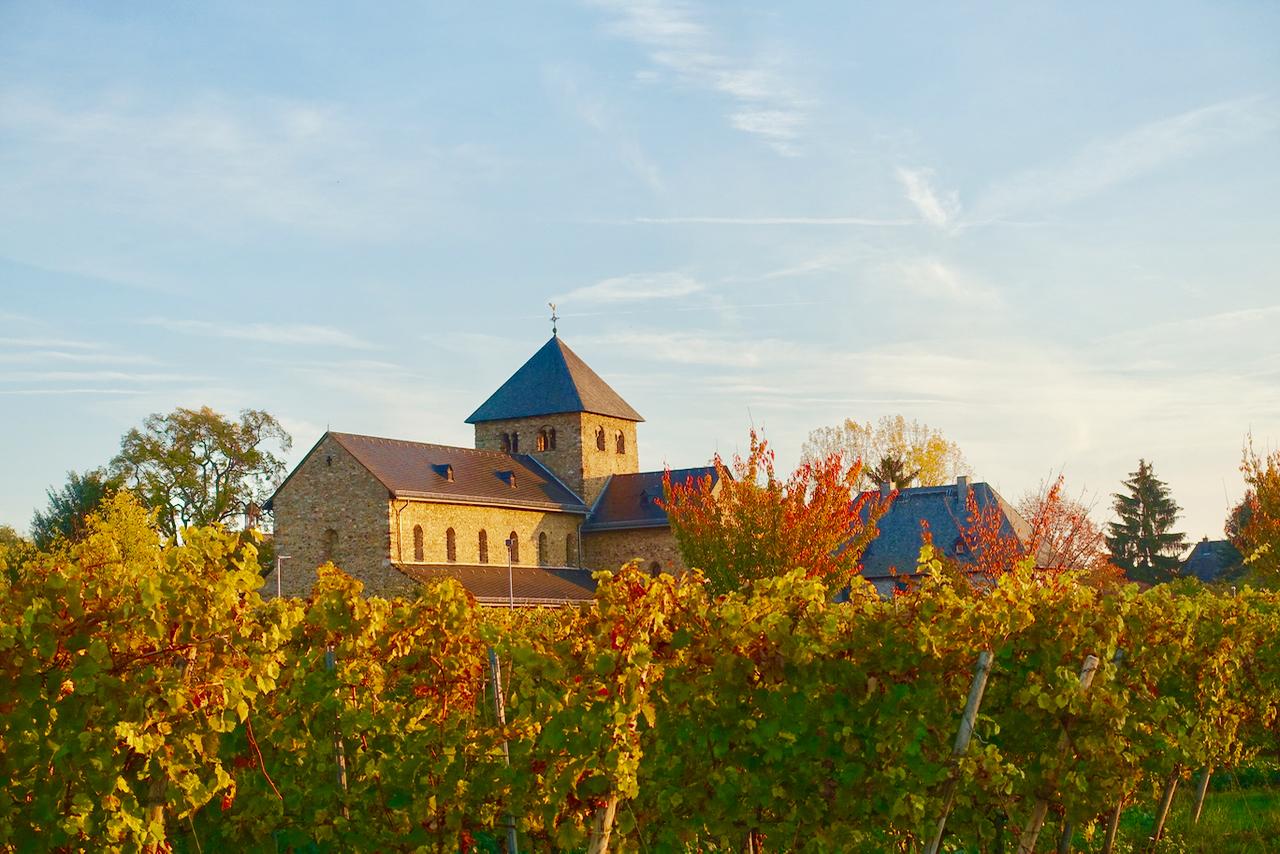 Rheingau Urlaub im Herbst