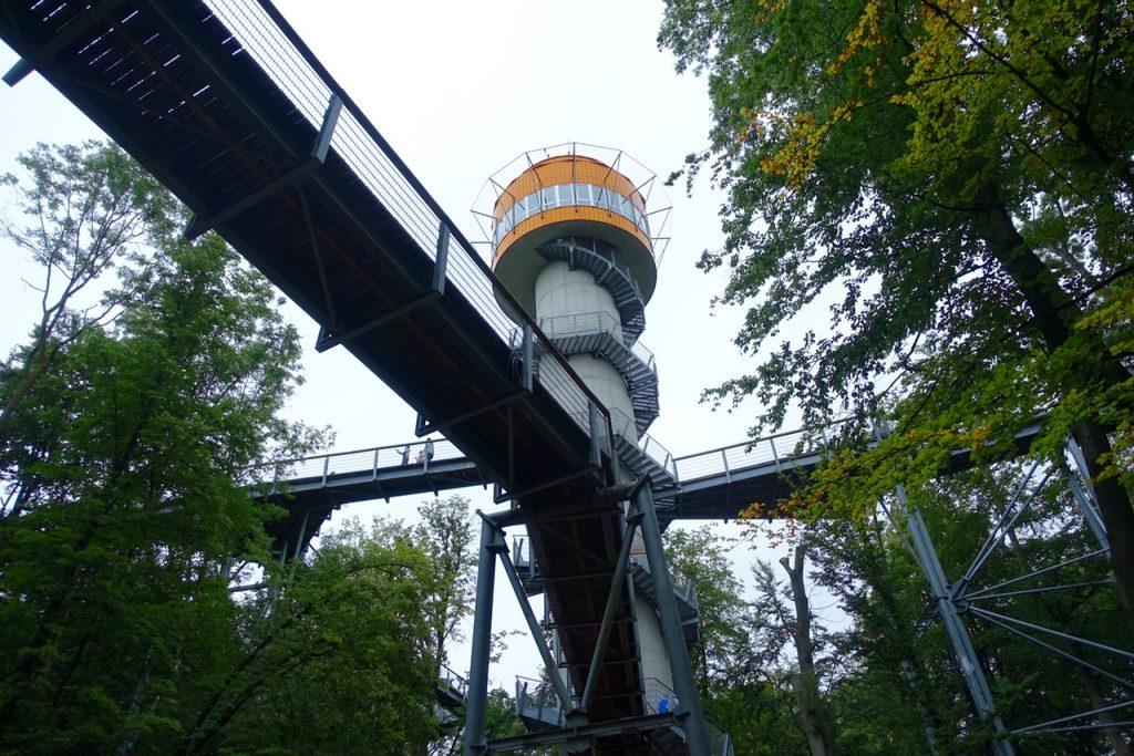 Urlaub in Thüringen - Baumwipfelpfad im Hainich