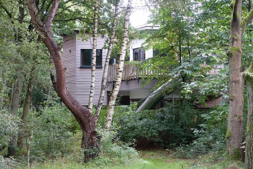 Coole, ungewöhnliche Location - Baumhäuser