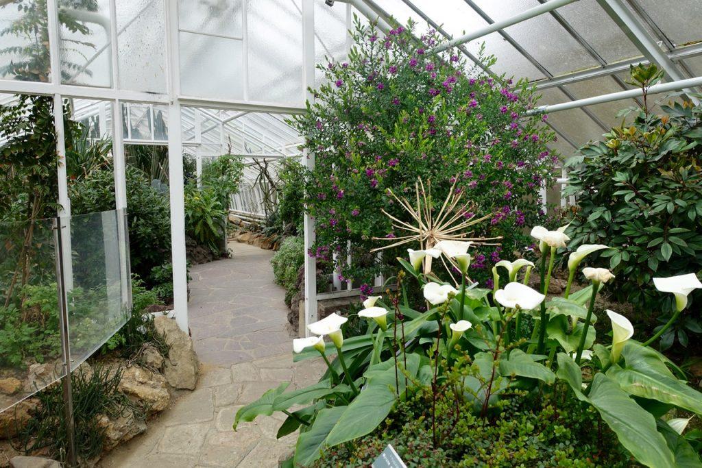 Unterwegs im Botanischen Garten