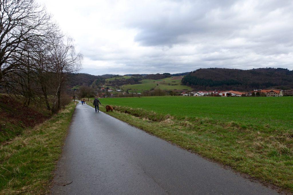 Spaziergang mit Minipferd - Urlaub Waldecker Land