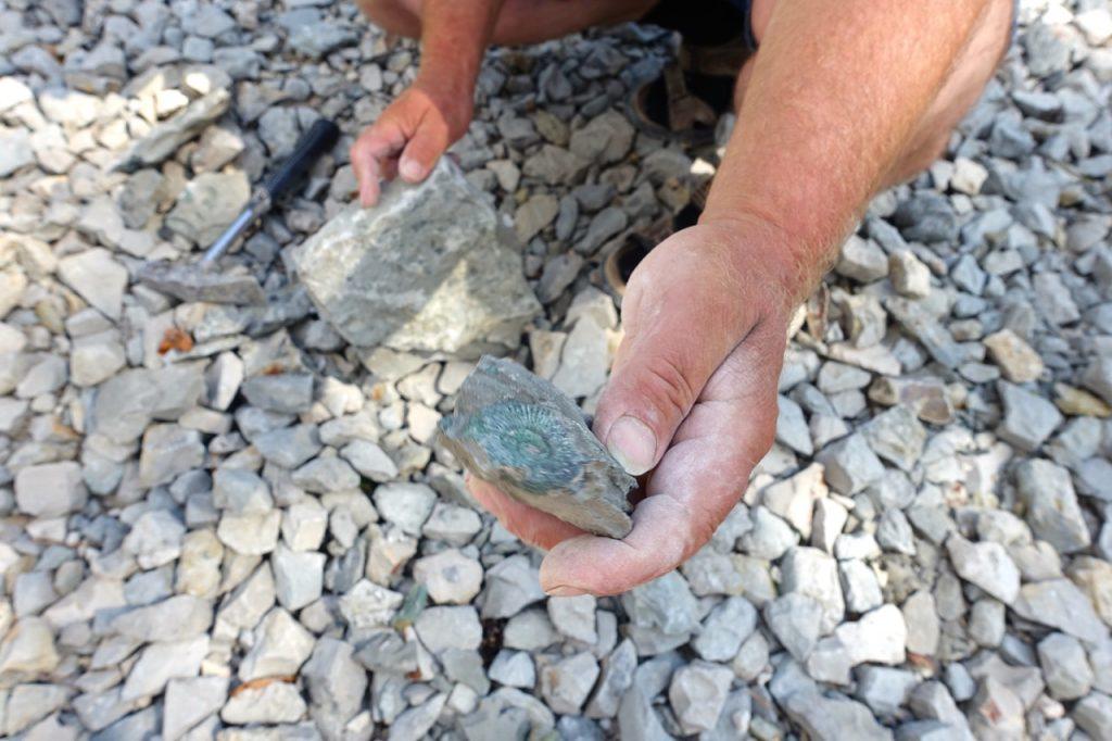 Wellnessfeeling beim Fossilienklopfen