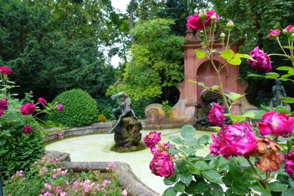 Unterwegs im Hofgarten Coburg