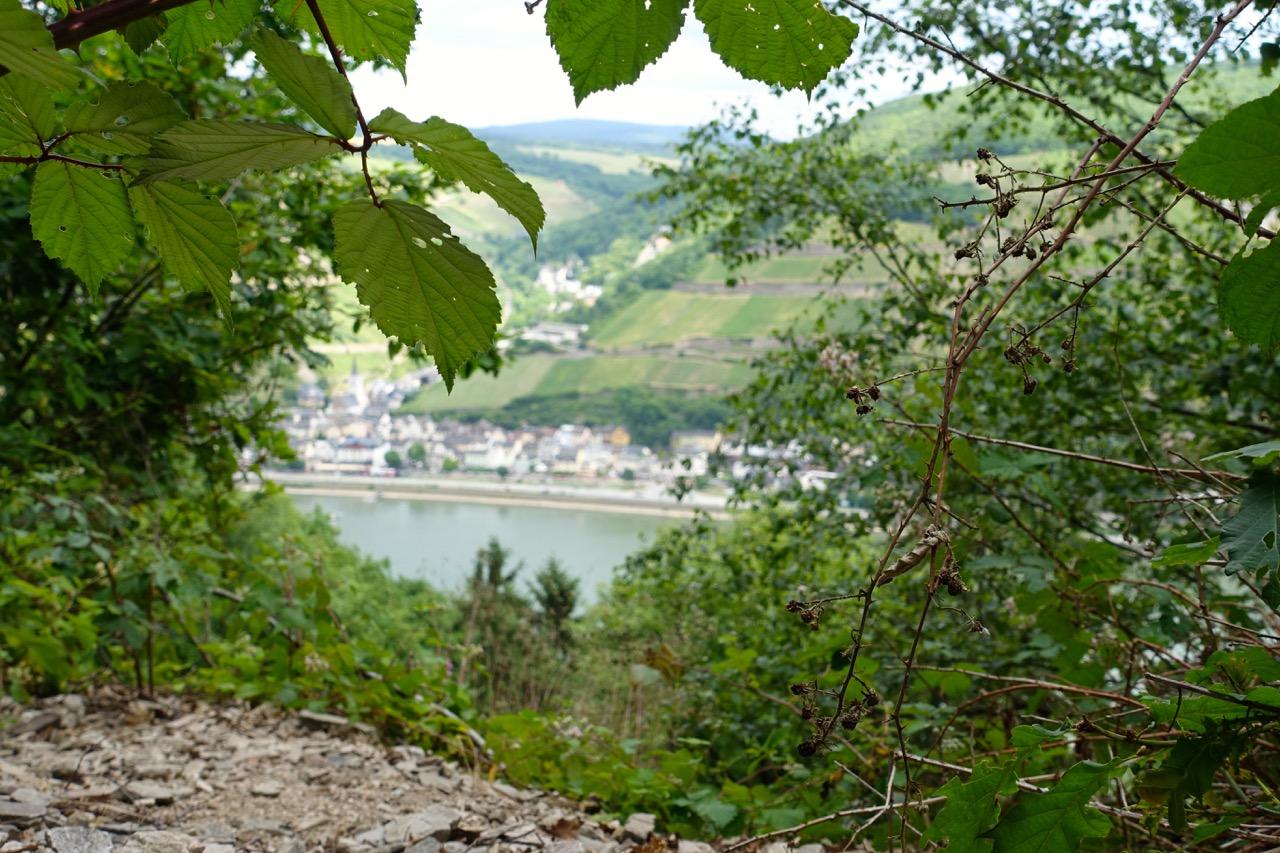 Rheinburgenweg – Aussichten auf den Rhein
