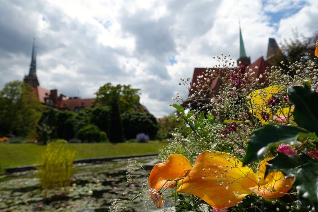 Blick aus dem Botanischen Garten Breslau