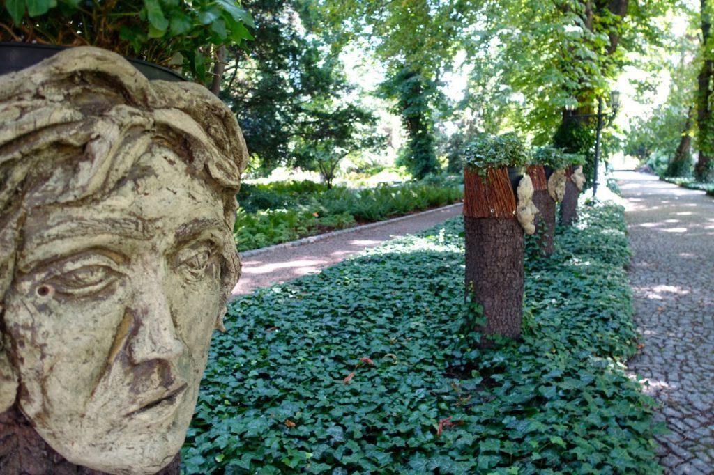 Entdeckungen im Botanischer Garten Breslau