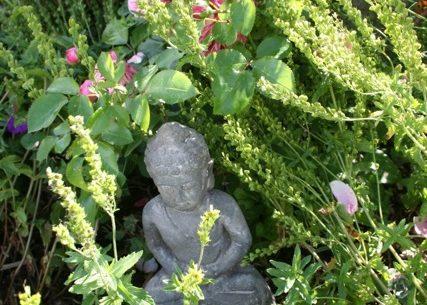Gartenarbeit wirkt entspannend und verbraucht auch richtig Kalorien