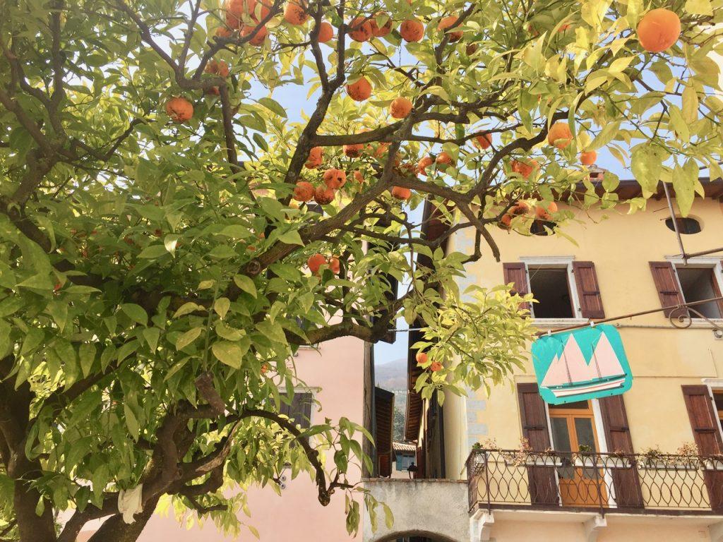 Urlaub am Gardasee Reisebericht