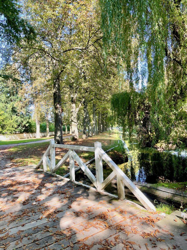 Sehenswuerdigkeiten Pfalz Schlosspark Schwetzingen