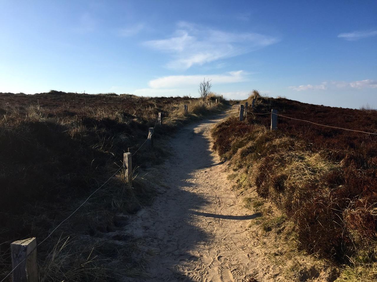 Sylt Aktivurlaub Wandern auf Sylt