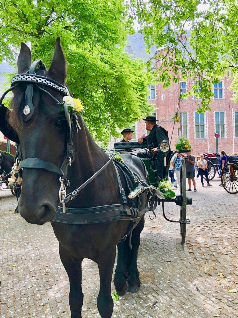 Middelburg Markt