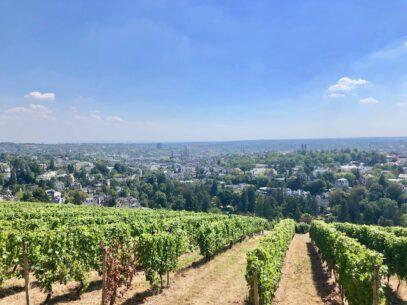 Wiesbaden Wellness