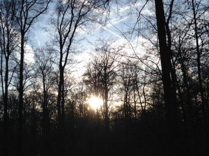 Slow Tourism - Natur, Ruhe, Entschleunigung, Digital Detox