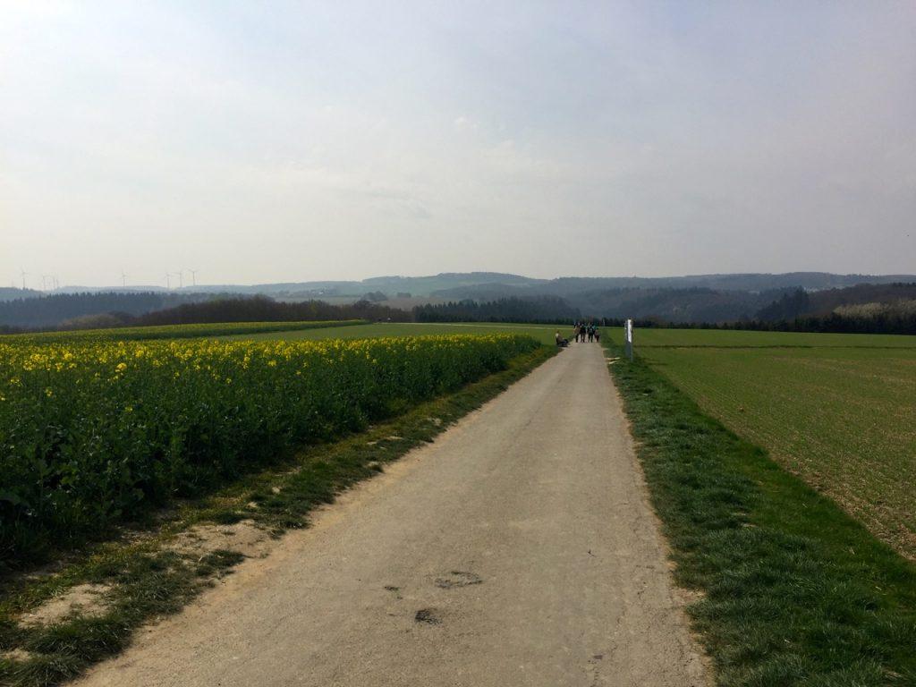 Auf dem Weg zur Geierlay Bruecke