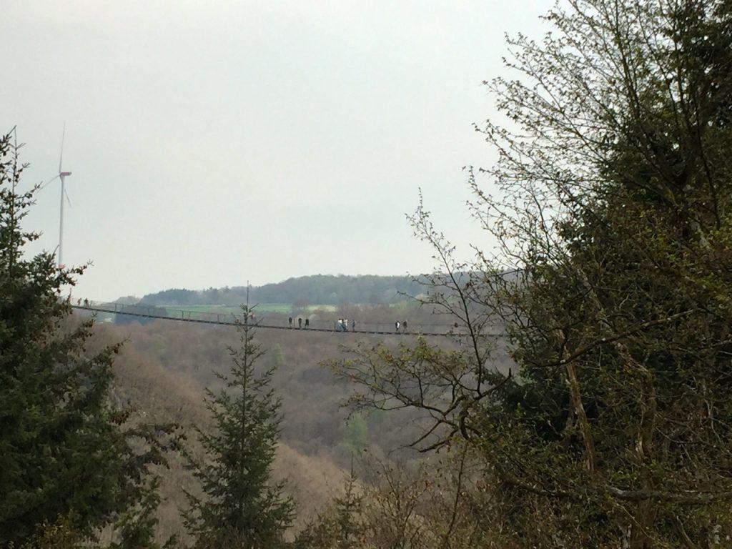 Blick zurück auf die Geierlay Brücke