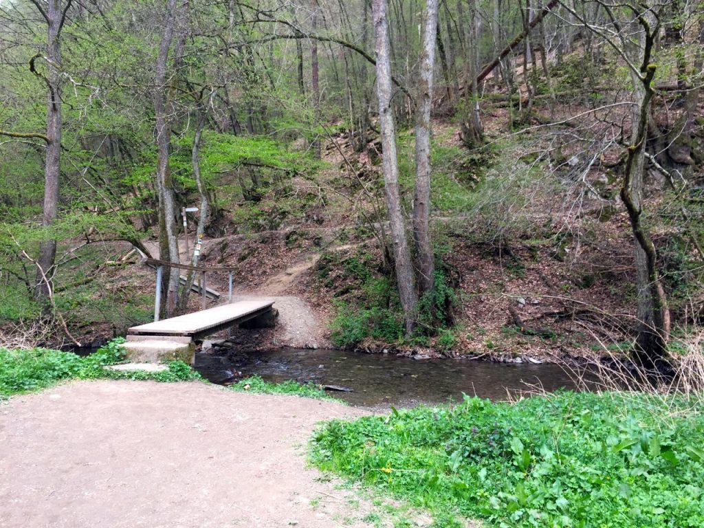 Geierlay Wanderweg - im Bachtal