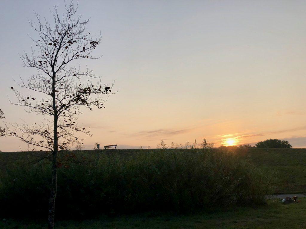 Sonnenaufgang Stade am Deich