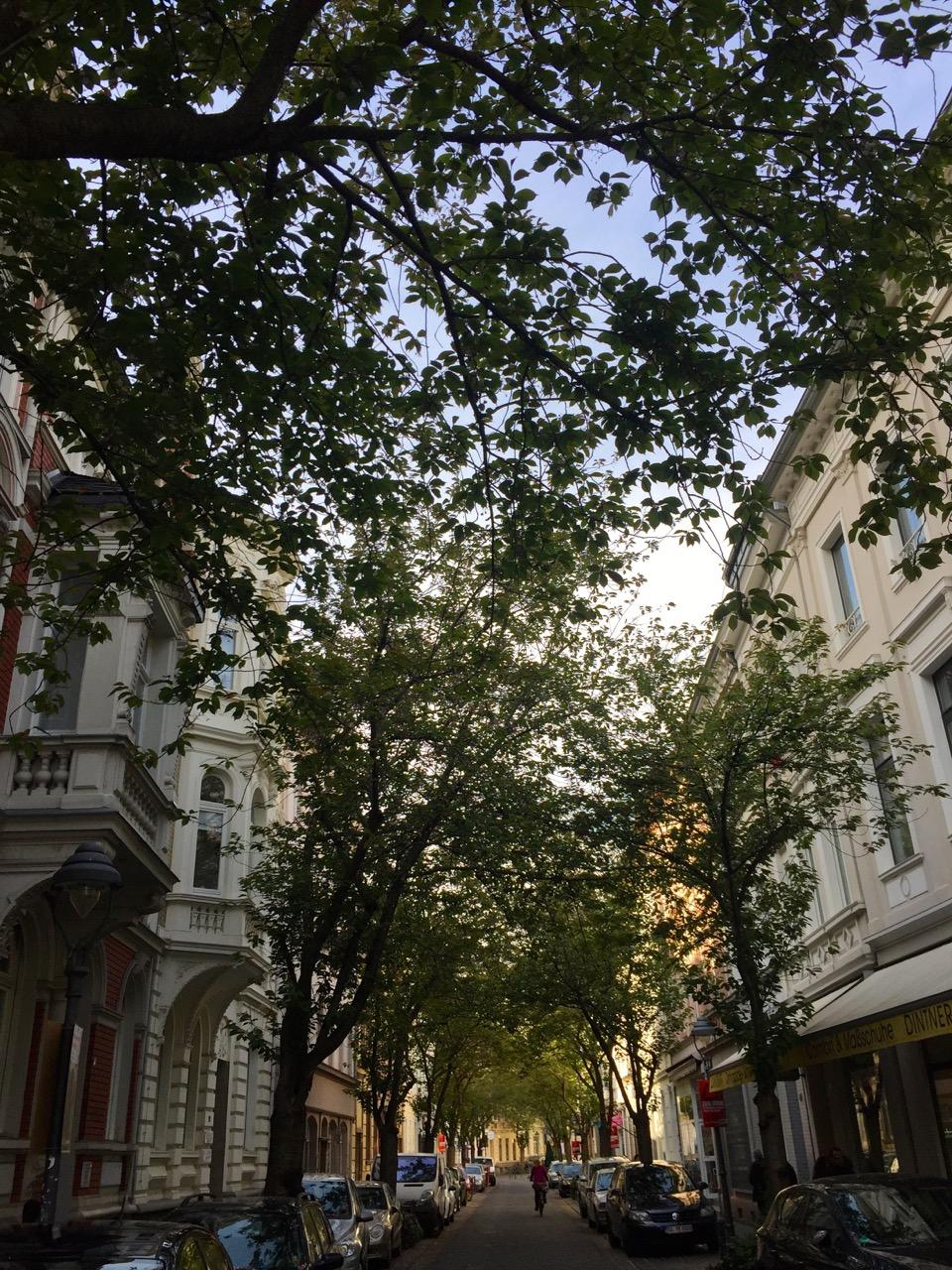Rundgang durch die Altstadt Bonn