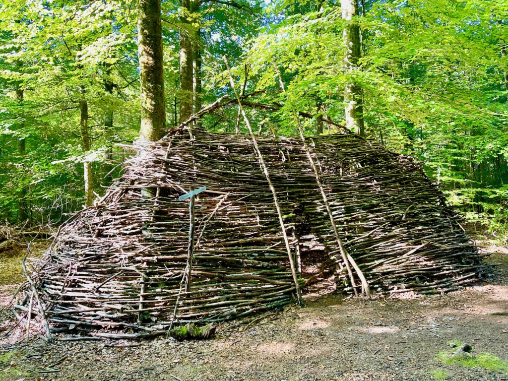 Wald fuer die Seele Bad Kissingen