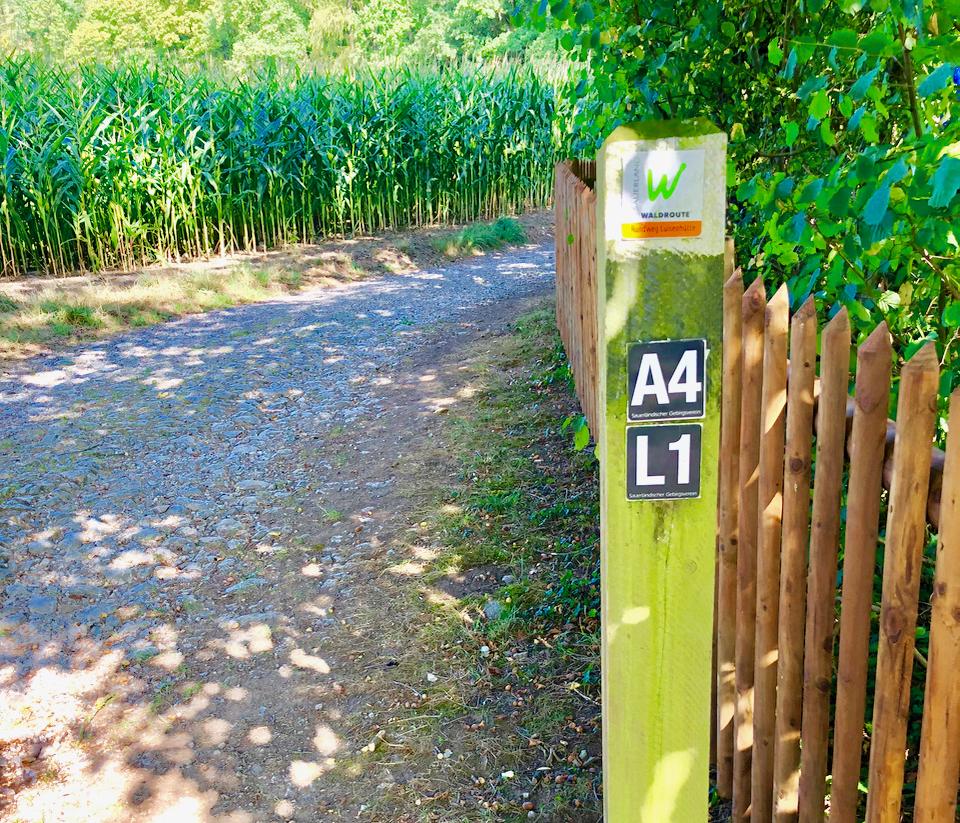 Wanderwege Sauerland