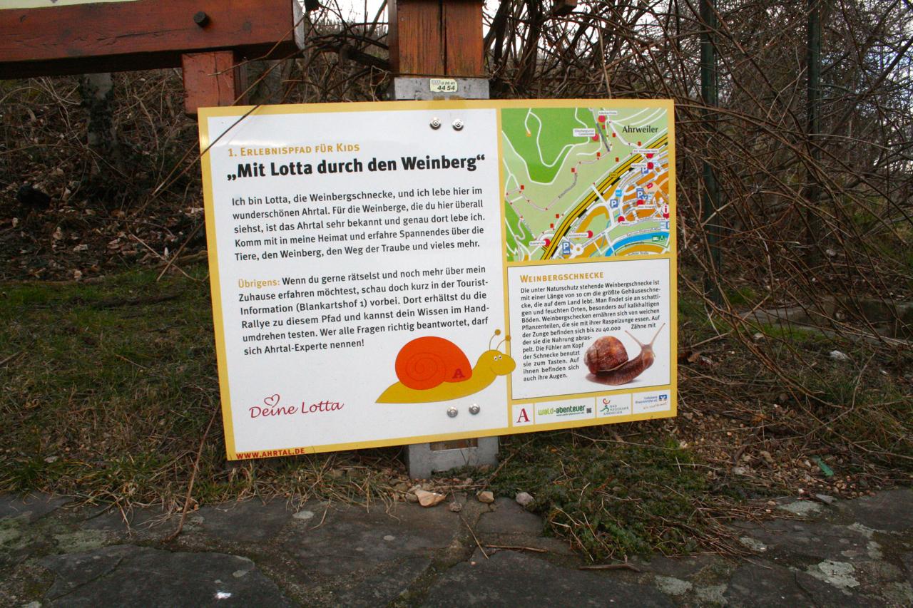 Wandern auf dem Rotweinwanderweg - begleitet von Weinbergschnecke Lotta