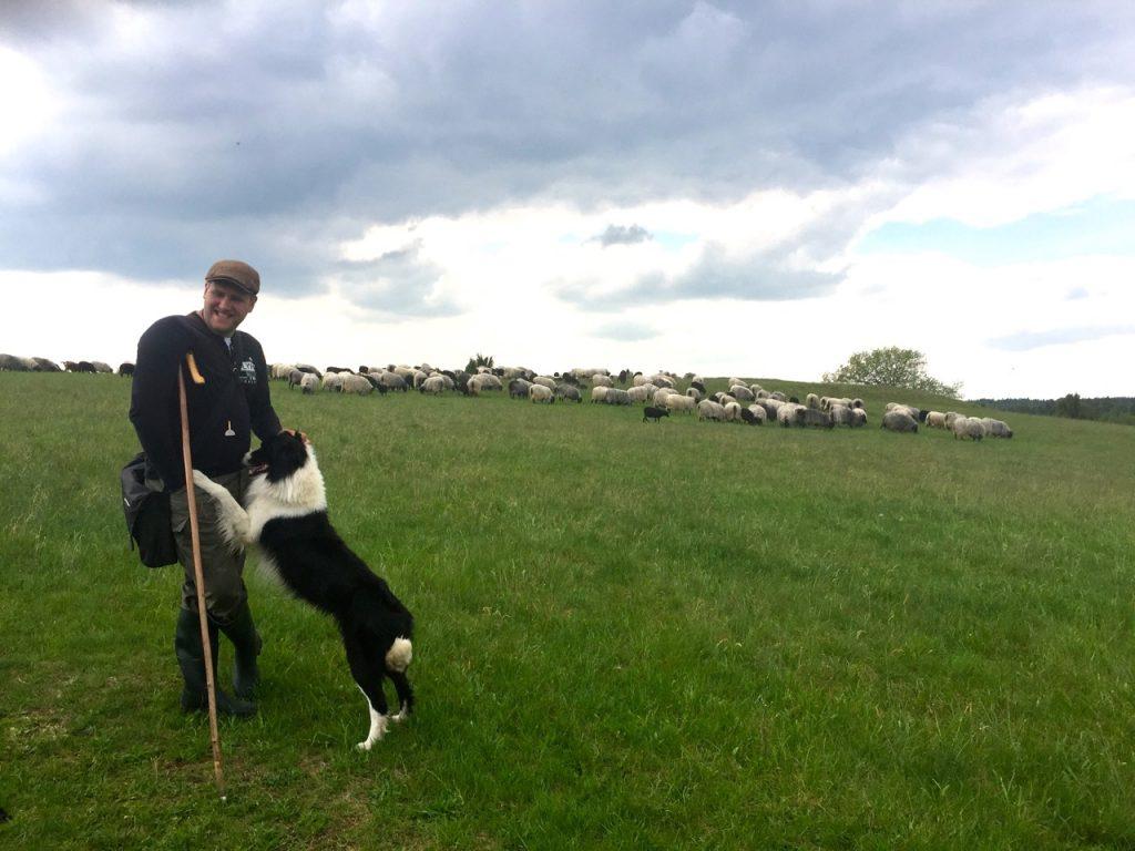 Urlaub Lüneburger Heide mit Hund