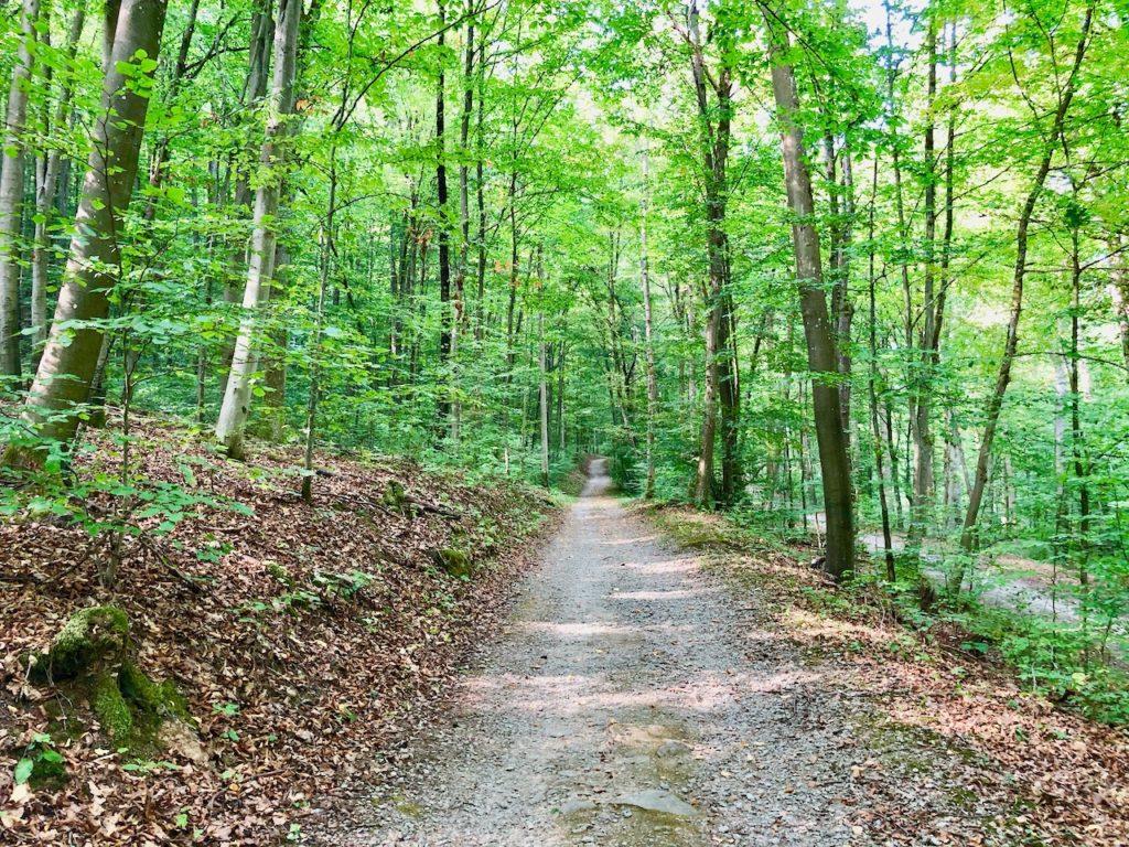 Waldbaden Bad Kissingen