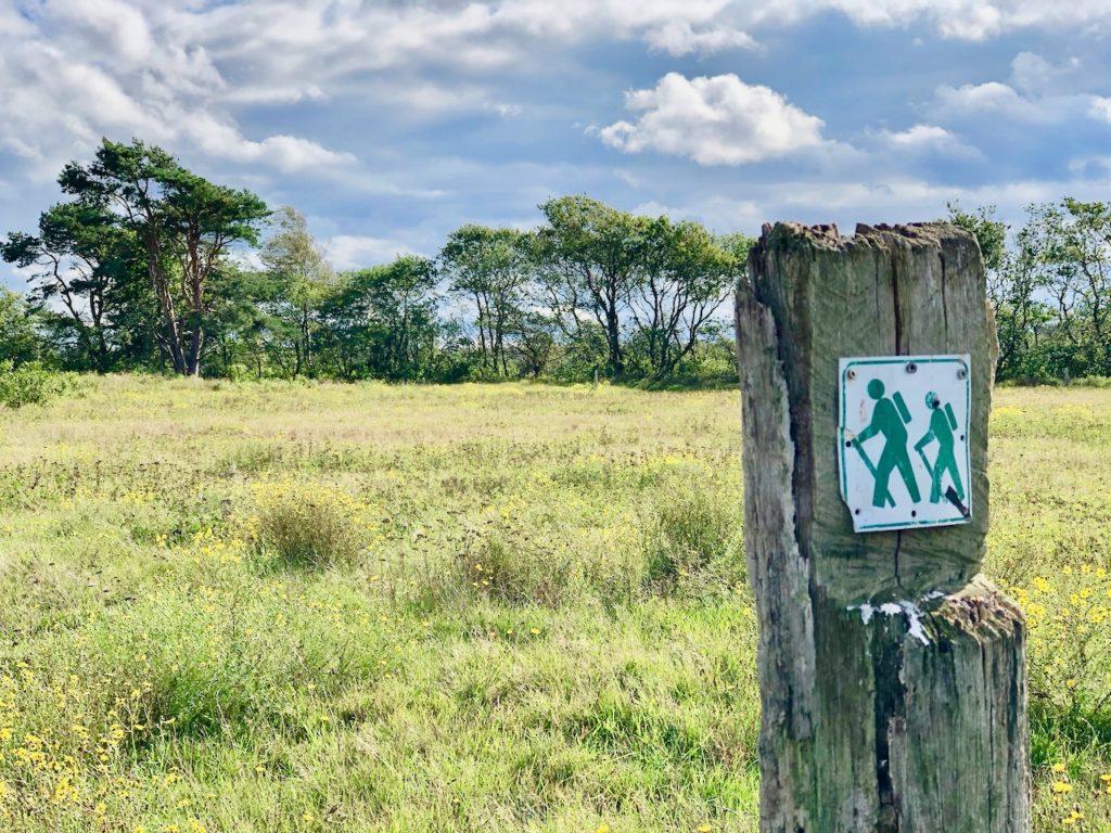 Nordsee Wandern: durch Wiesen und Felder