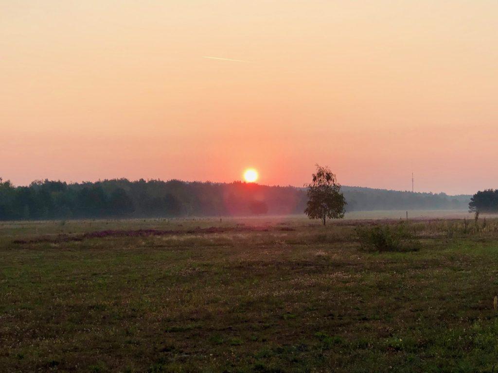 Sonnenaufgang Spreewald