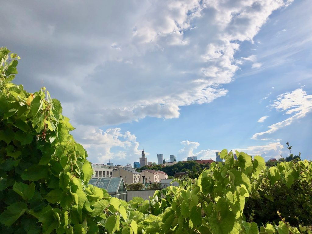Warschau Geheimtipp: Blick vom Dach der Uni-Bibliothek