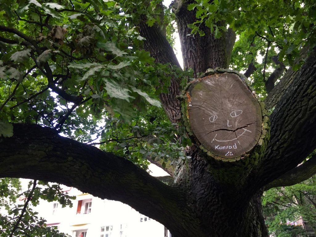 Entdeckungen entlang des roten Fadens in Stettin