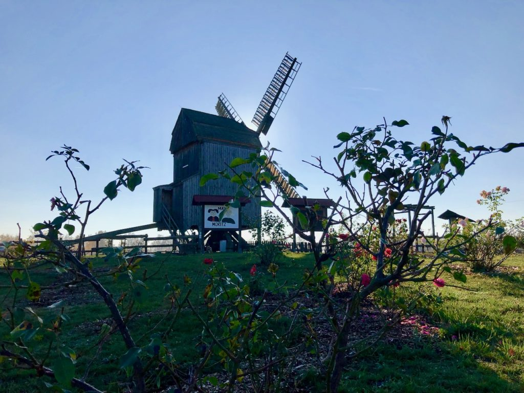 Elbe Elster: Miniaturpark Kleine Lausitz
