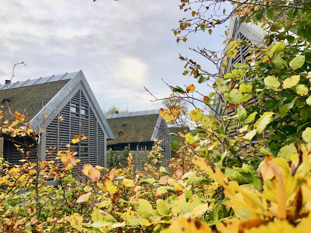 Alkmaar Ferienhaus Duynvoet Park Schoorl