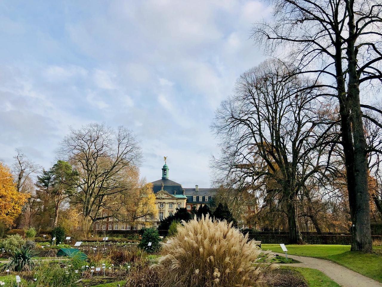 Blick aus dem Botanischen Garten Muenster zum Schloss Muenster