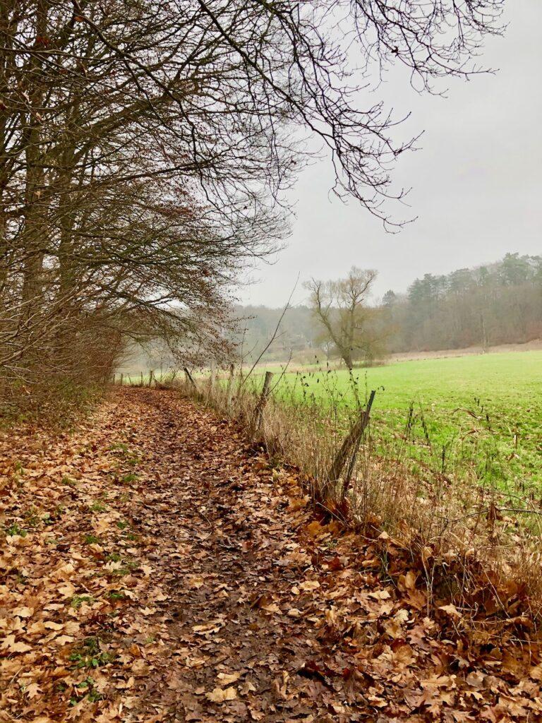Wandern Schleswig-Holstein