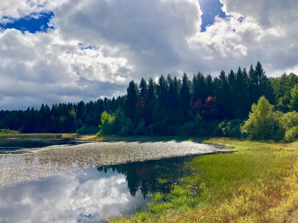 Badesee Oberharzer Wasserregal