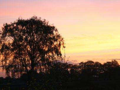 Natur pur - Sonnenuntergang