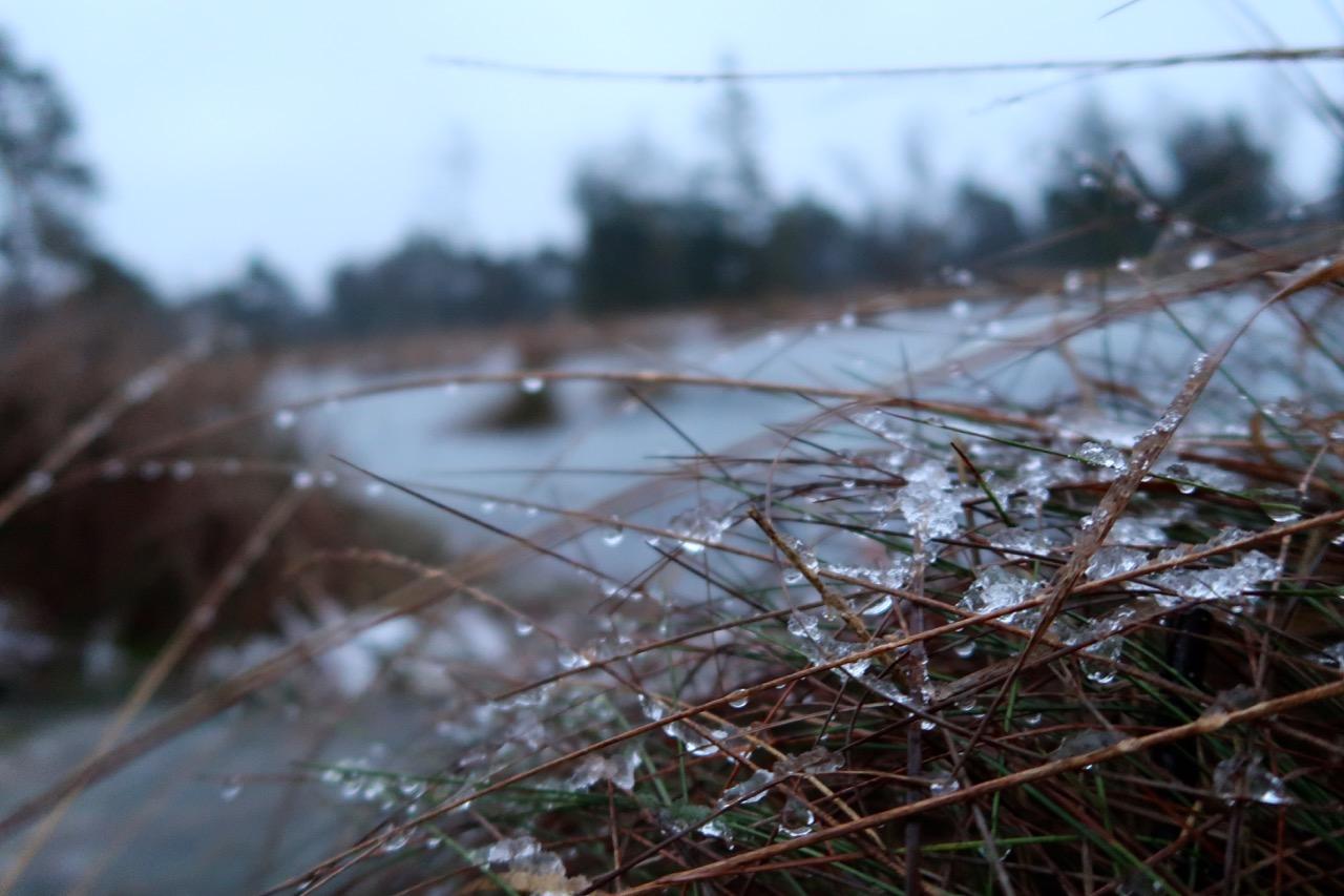 Tister Bauernmoor Wanderung im Winter