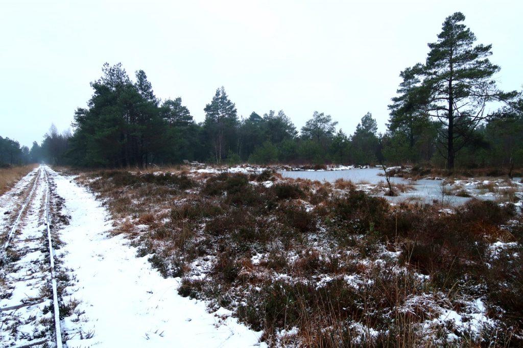 Tister Bauernmoor im Winter